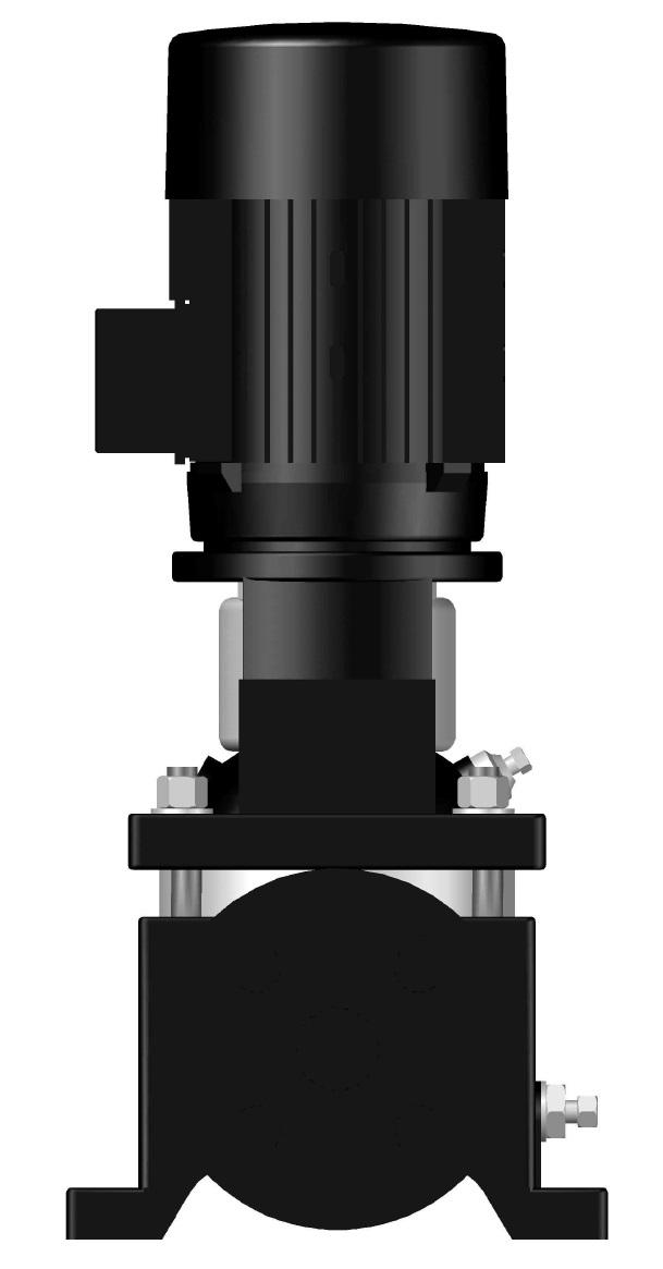 BV 02-03