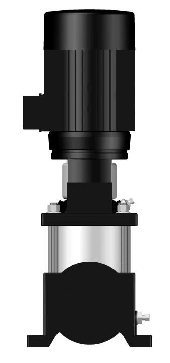 BV 04-06